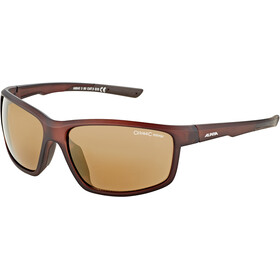 Alpina Defey Lunettes, brown transparent matt/gold mirror